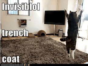 Invisiblol trench coat
