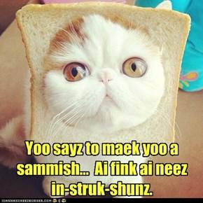 Yoo sayz to maek yoo a sammish...  Ai fink ai neez  in-struk-shunz.