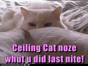 Ceiling Cat noze whut u did last nite!