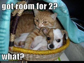got room for 2?  what?