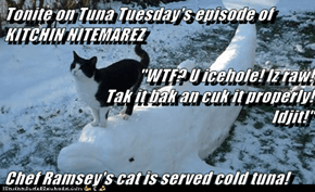 "Tonite on Tuna Tuesday's episode of KITCHIN NITEMAREZ  ""WTF? U icehole! Iz raw!                                       Tak it bak an cuk it properly!                                Idjit!""  Chef Ramsey's cat is served cold tuna!"