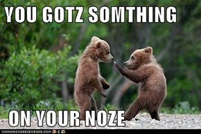 YOU GOTZ SOMTHING    ON YOUR NOZE