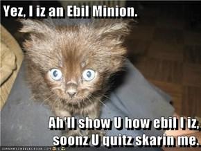 Yez, I iz an Ebil Minion.