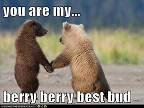 you are my...  berry berry best bud