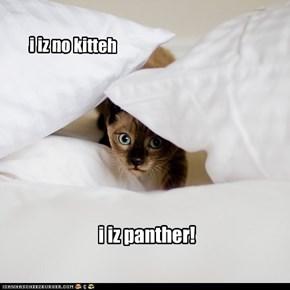 i iz no kitteh