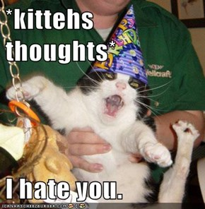 *kittehs thoughts*  I hate you.