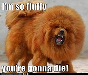 I'm so fluffy
