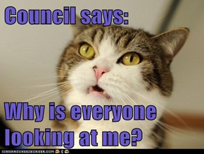 Council says:   Why is everyone looking at me?
