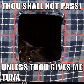 THOU SHALL NOT PASS!  UNLESS THOU GIVES ME TUNA.