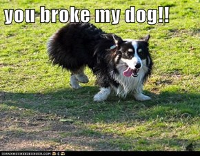 you broke my dog!!