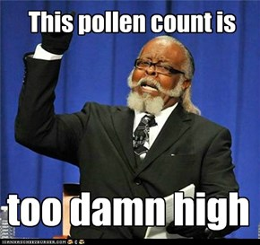 I'm allergic