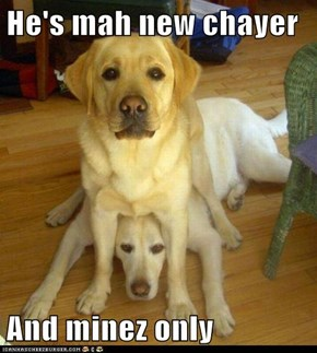 He's mah new chayer  And minez only