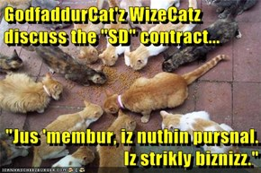 "GodfaddurCat'z WizeCatz discuss the ""SD"" contract...  ""Jus 'membur, iz nuthin pursnal. Iz strikly biznizz."""