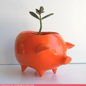 Piggie Planter