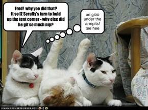 Fred!  why yoo did that?It so IZ Scruffy's turn to holdup the tent corner - why else did he git so much nip?