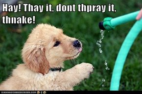Hay! Thay it, dont thpray it, thnake!