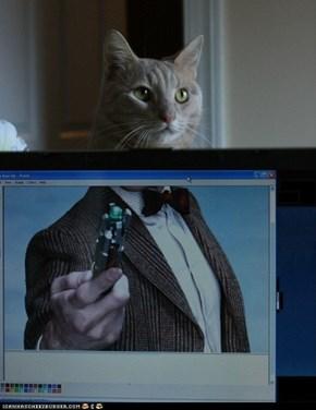 Doctor Mew