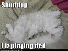 Shuddup  I iz playing ded