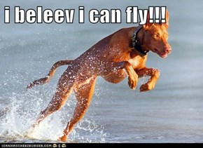 i beleev i can fly!!!