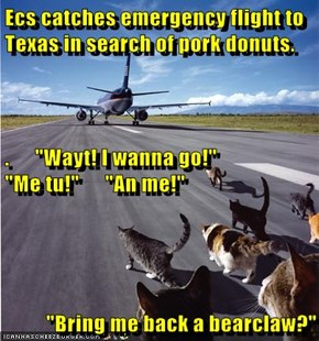 "Ecs catches emergency flight to Texas in search of pork donuts. .      ""Wayt! I wanna go!""                                ""Me tu!""      ""An me!"" ""Bring me back a bearclaw?"""