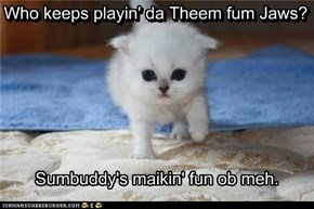 Sumbuddy's Maikin' Fun Ob Meh
