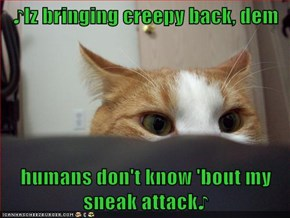 LOLcats: Justuna Timpurrlake