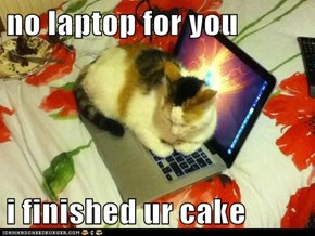 no laptop for you  i finished ur cake