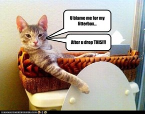 U blame me for my litterbox...
