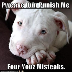 Pwease Dun Punish Me  Four Youz Misteaks.