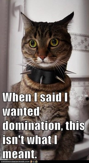Lolcats: When I said I wanted domination,