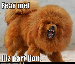 Fear me!  I iz part lion.