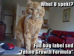 "Whut U spekt?  Fud bag label sed                    ""Feline Growth Formula"""