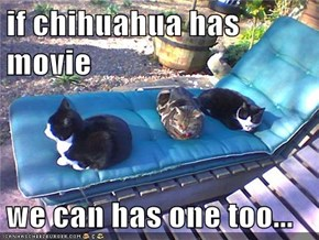 if chihuahua has movie  we can has one too...