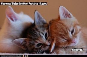 Meownsa Objective One: Practice I-kyoot.