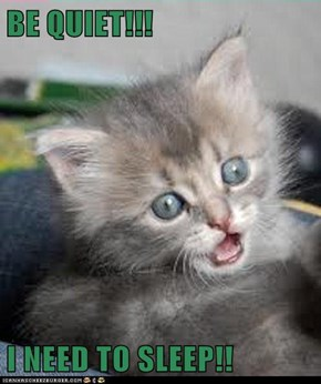 BE QUIET!!!  I NEED TO SLEEP!!