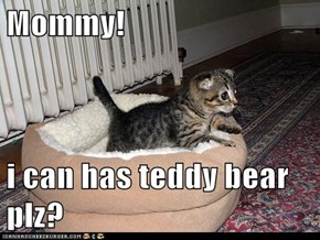 Mommy!  i can has teddy bear plz?