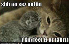 shh no sez nuffin  i kin feel iz ur fabrit