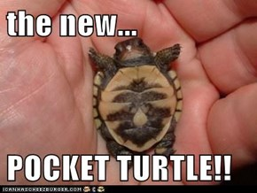 the new...  POCKET TURTLE!!