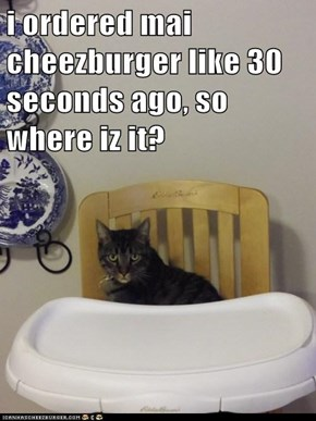i ordered mai cheezburger like 30 seconds ago, so where iz it?