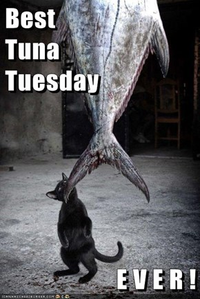 Best                           Tuna                       Tuesday  E V E R !