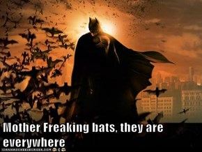 Mother Freaking bats, they are everywhere