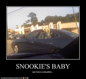 SNOOKIE'S BABY