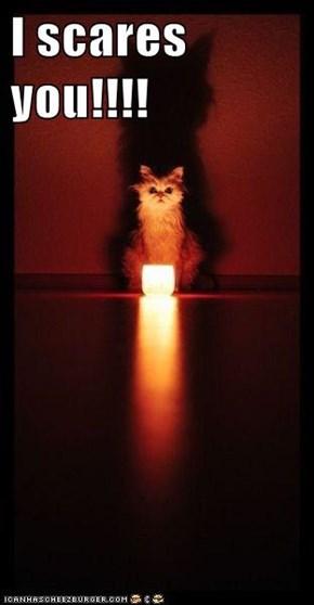 I scares you!!!!