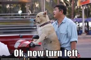 Ok, now turn left