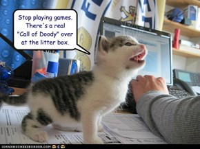 Lolcats: Stop Playing Games.