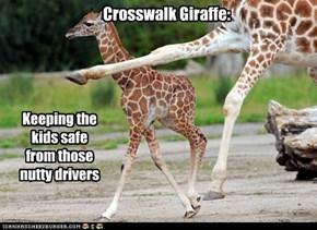 Crosswalk Giraffe