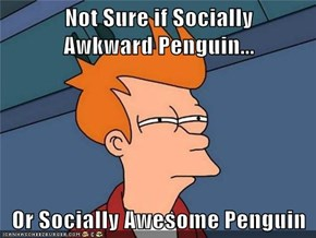 Not Sure if Socially        Awkward Penguin...  Or Socially Awesome Penguin