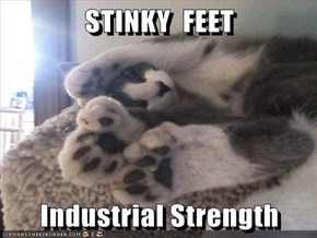 STINKY  FEET  Industrial Strength