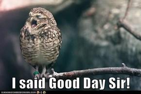 I said Good Day Sir!
