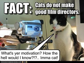 Cats do not make good film directors.